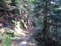 Alpe Fraccia, sentiero per Nembro