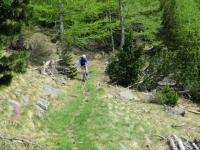 Tratto di discesa su facile sentiero dagli alpeggi superiori di Simplon Dorf