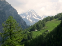Vista sull'alpeggio in prossimità del Furggupass