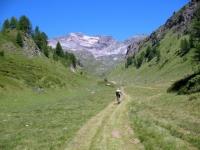 Salita all'Alpe Forno - Alpe Canaleccio