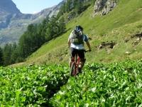 Nei pressi dell'Alpe Sangiatto