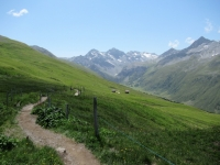 Alps Epic Trail Davos - Inizio del fantastico single track che dallo Jakobshorn scende nella valle di Sertig