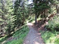 Sentiero che  da Sand sale ad Äbirügg - Inizio del tratto più impegnativo nel bosco