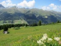 I verdi e fioriti pascoli di Äbirügg
