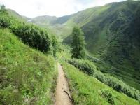 Il sentiero che da Nidel Löffel conduce alla Hauderalp