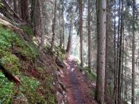 Alps Epic Trail Davos - Inizio del tratto di discesa dopo Davos Monstein