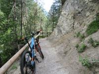 Alps Epic Trail Davos  - In direzione del Wiesen Viadukt