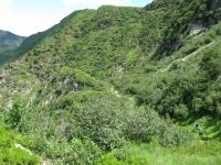 Tratto a mano nel sentiero in direzione della Bocchetta di Sommafiume