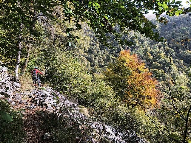 Lungo il sentiero F5 da Artignaga al Ponte in metallo sul torrente Sessera