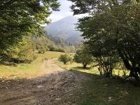 In direzione dell'Alpe Piana del Ponte