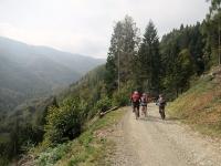 Dall'Alpe Piana dei Lavaggi in direzione del Poggio Selletto Grosso lungo il facile  sterrato F14