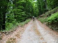 Salita all'Alpe di Torricella - inizio dello sterrato