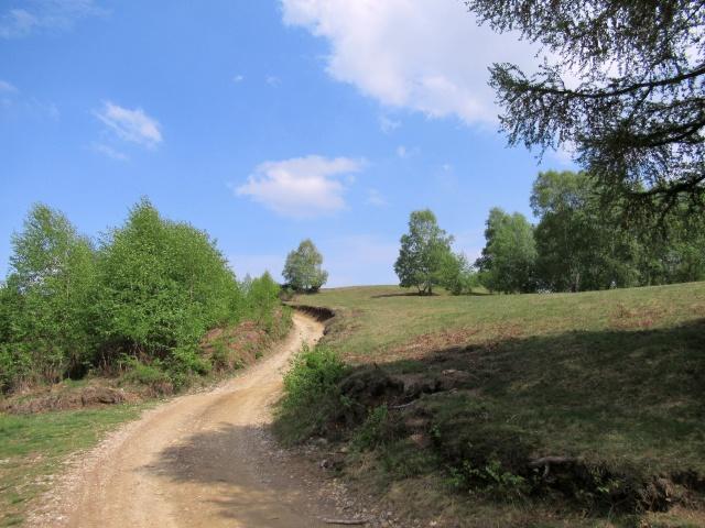 Salita lungo la Passeggiata degli alpeggi/></p> </div>                 <button type=