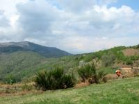 """Salita lungo la """"passeggiata degli alpeggi"""" da Coiromonte verso il Monte del Falò - vista sul Monte Mottarone"""