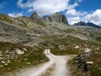 In direzione dell'Oberalppass - particolare sul Gross Schijen