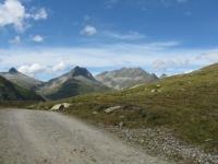 Sterrato negli alpeggi di Maighels in direzione del Passo - panorama