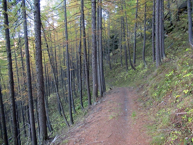 Sentiero per Malafosse Bassa
