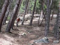 Il sentiero che scende dalle pendici della Becca France verso Combellin