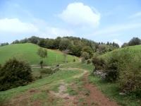 Alpe Bonello presso l'omonimo Passo