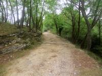 L'ultimo tratto della antica strada patriziale che precede il Rifugio Alpe Caviano