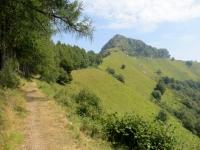 Il sentiero che conduce al Rifugio Prabello dal Dosso d'Arla