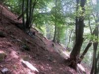 Il sentiero per Roncapiano