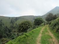 In direzione della Bocchetta di San Bernardo