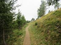 Sentiero del Val Colla Bike che collega l'Alpe Pietrarossa con Piandanazzo