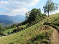 Bel trail tra i Monti di Cima ed i Monti di Bigorio