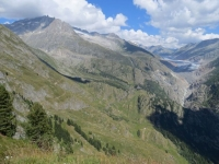 Panorama dall'Aletschbord di Belalp: ghiacciaio dell'Aletsch, sulla sinistra il complesso del Gross Fusshorne del Fusshoerner con il Driestgletscher