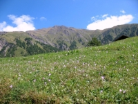 Salita per Rosswald - panorama