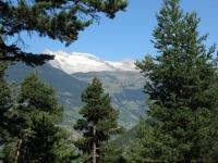 Vista su Riederalp - altopiano dell'Aletsch