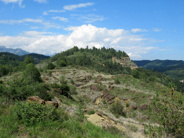 Nella Riserva dei Monti Pelati - panorama sulla Torre Cives