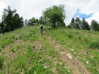 Trail di discesa dal Monte Calvo verso Palasot