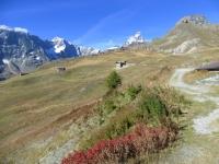 Alpe Molar