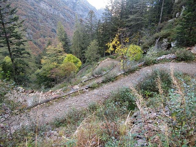 Il tratto a tornanti della ciclabile in quota che scende in Val Sorba