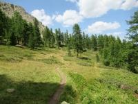 Discesa in Val de la Clarée - Tratto facile nel bosco