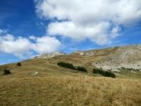 Panorama dall'alpeggio di Le Drouvet - La strada che risale alla militare del Fort de Olive