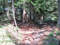 Sentiero che scende a valle dal Col du Bard