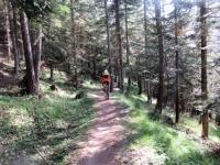 Bel sentiero che riporta a Gleise