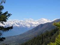Panorama percorrendo la forestale che sale alla Colma di Craveggia - gruppo del Mischabel e Trittico del Sempione