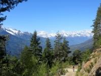 Panorama percorrendo la forestale che sale alla Colma di Craveggia - Gruppo Monte Rosa (sx), gruppo del Mischabel (centro) e Trittico del Sempione (dx)