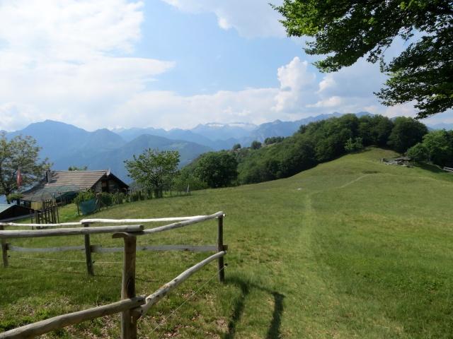 Alpe Survi