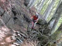 Il sentiero che dalla Corona dei Pinci scende all'Alpe Survi