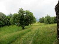 Il sentiero che attraversa i prati di Artore