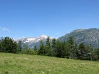 Panorama dall'Alpe Foppiano