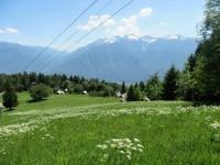 Salita all'Alpe Torcelli - Panorama sull'Alpe Foppiano