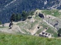 Fortificazioni sotto il Fort de Lenlon