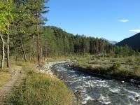 Il sentiero in direzione di Fenils lungo la Dora Riparia