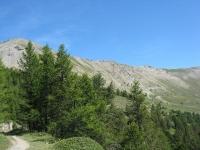 Fort Foens - Le pendici della dorsale tra il Monte Jafferau ed il Monte Vin Vert